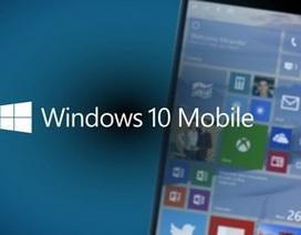 Microsoft bắt đầu phát hành Windows 10 Mobile đến người dùng