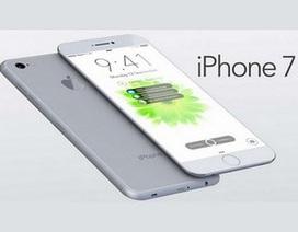 CEO Apple hé lộ iPhone thế hệ mới sẽ có tính năng không ai ngờ