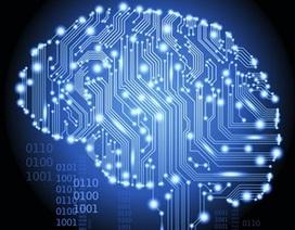 Google công bố 5 nguyên tắc để phát triển trí tuệ nhân tạo