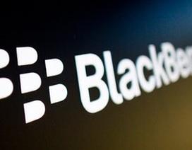Lịch sử đầy thăng trầm của BlackBerry trên thị trường di động