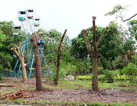 Một tuần sau bão, công viên lớn nhất Ninh Bình vẫn tan hoang