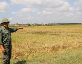 Ninh Bình: Hơn 2.400 hộ dân lao đao vì một dự án ì ạch!