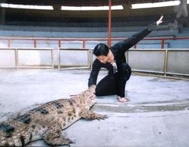 """""""Vua cá sấu đất Bắc"""" bật mí bí quyết """"thôi miên"""" cá sấu để diễn xiếc"""
