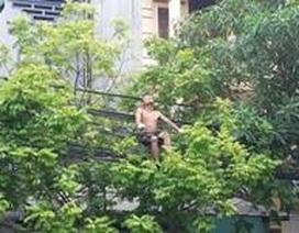 Kinh hãi nhìn nam thanh niên ngồi hát trên... dây điện