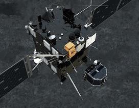 Tàu thăm dò châu Âu hạ cánh thành công lên bề mặt sao chổi