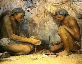 Con người sử dụng lửa từ 350.000 năm trước?