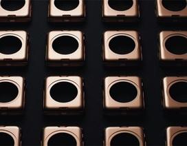 Chiêm ngưỡng quy trình sản xuất chiếc Apple Watch phiên bản đắt nhất