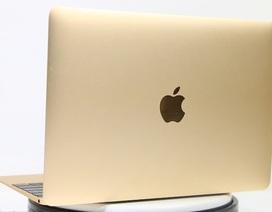 Macbook 12 inch chính hãng có giá khởi điểm từ 33 triệu đồng