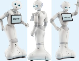 1.000 robot Pepper bán hết chỉ trong 1 phút tại Nhật Bản