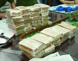 Xét xử đường dây mua bán hơn 5.000 bánh heroin