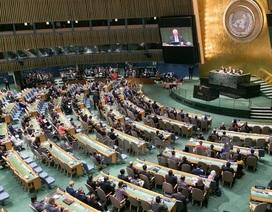 Việt Nam trúng cử thành viên Hội đồng Kinh tế-Xã hội Liên hợp quốc