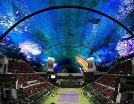 Dubai muốn mang cả... sân quần vợt xuống dưới nước