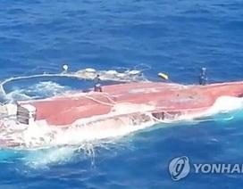 Chưa tìm thấy 5 thuyền viên Việt Nam mất tích ở Hàn Quốc