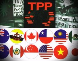 Quan hệ Việt-Mỹ vẫn sẽ phát triển mạnh mẽ nếu TPP thất bại