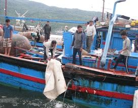 Tàu trinh sát Trung Quốc giả dạng tàu cá vào sâu lãnh hải Việt Nam