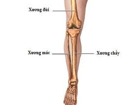 Quy trình theo dõi chấn thương cẳng chân