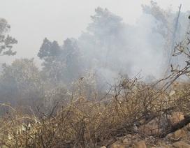 Cháy lớn rừng Nam Hải Vân