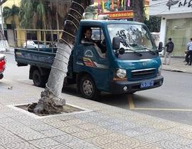 Đà Nẵng phạt xe phường đỗ sai từ phản ánh qua Facebook