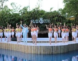 Top 33 thí sinh Hoa hậu Việt Nam khoe hình thể sexy với bikini