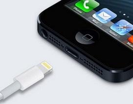 """Người mua iPhone 5 bị """"hớ"""" vì tưởng được bộ chuyển đổi miễn phí"""
