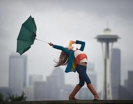 Ấn tượng bộ ảnh những vũ công tuyệt đẹp gây sốt trên mạng