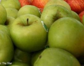 Buộc thu hồi ngay các lô táo do Bidart Bros cung cấp