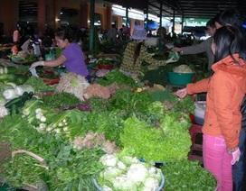 """Rau quả Trung Quốc """"đội lốt"""" hàng Việt ngập chợ, siêu thị"""