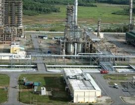 Vướng nợ, lọc dầu Dung Quất vẫn chưa bán xong cổ phần