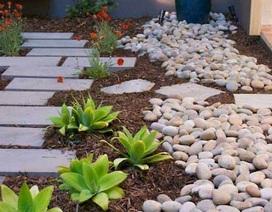 Những ý tưởng trang trí nhà bằng đá và sỏi