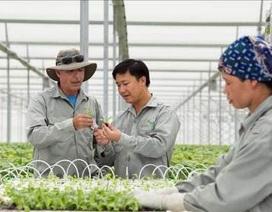 """""""Mục sở thị"""" công nghệ nông nghiệp đỉnh cao của Israel tại VinEco"""