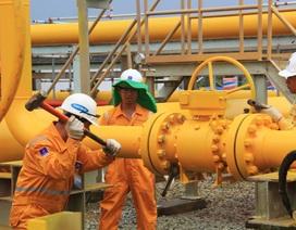 Hoàn thành trước tiến độ công tác bảo dưỡng sửa chữa Hệ thống đường ống PM3-Cà Mau năm 2016