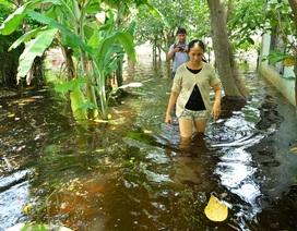 Trận mưa kỷ lục ở TPHCM: Sau 1 tuần nước vẫn bủa vây nhà dân