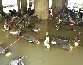 """Gần 1.400 ô tô, xe máy bị nhấn chìm trong trận mưa """"lịch sử"""""""