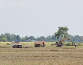Sóc Trăng: Báo động tình trạng khai thác đất mặt ruộng