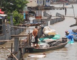 Kè sông đang thi công bị sạt lở nghiêm trọng
