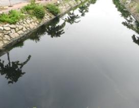 """Dòng kênh đen tra tấn người dân: Không """"xóa"""" ô nhiễm lại xây lan can... cho đẹp!"""