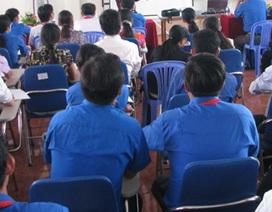 Cà Mau: Hơn 250 trường hợp hợp đồng lao động vượt chỉ tiêu biên chế