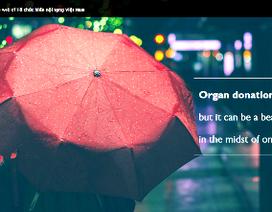 """Xuất hiện website """"ma"""" lừa bệnh nhân hiến tạng"""