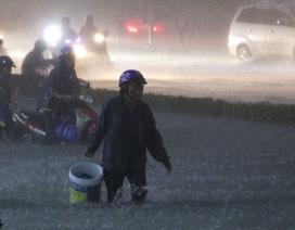 Thường xuyên phải lội mưa ngập có thể mắc bệnh gì?