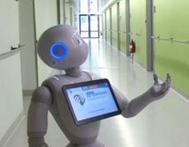 Robot làm việc ở bệnh viện, nói được 19 thứ tiếng