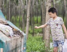 Cảm động bé trai nhặt rác góp tiền chữa bệnh cho mẹ
