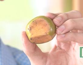 Tại sao khi cắt hoa quả để một thời gian lại bị thâm đen?