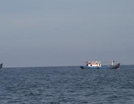 Tìm thấy một thi thể nghi là thuyền viên vụ chìm tàu tại Bình Thuận