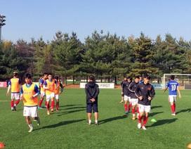 Hôm nay, đội tuyển Việt Nam rời Hàn Quốc về Hà Nội