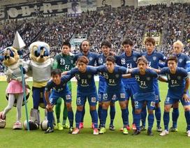 Avispa Fukuoka mang 18 cầu thủ sang đá giao hữu với đội tuyển Việt Nam