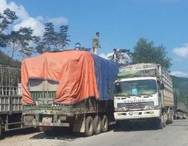 """Bắt tại trận đoàn xe quá tải """"ì ạch"""" từ Lào về Nghệ An"""