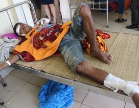 Bị lợn rừng tấn công, một người nhập viện với 14 vết thương