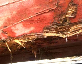 Tàu chìm nghỉm vì va phải đá ngầm, 18 ngư dân may mắn thoát chết
