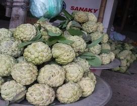 Thương lái Trung Quốc thu mua hạt na ở Lạng Sơn