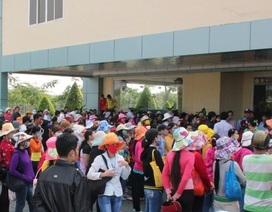"""Doanh nghiệp Việt Nam thua doanh nghiệp nước ngoài: Ta tự """"hại"""" ta!"""